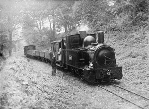 Freight train on the Welshpool & Llanfair Light Railway, by Selwyn Pearce-Higgins