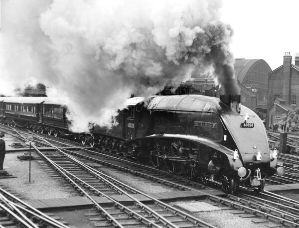 "Class A4 Pacific locomotive no. 60028 ""Walter K Whigham"" heads the Royal Train out of King's Cross at 10.15 am on 8 June, 1961 enroute for York"
