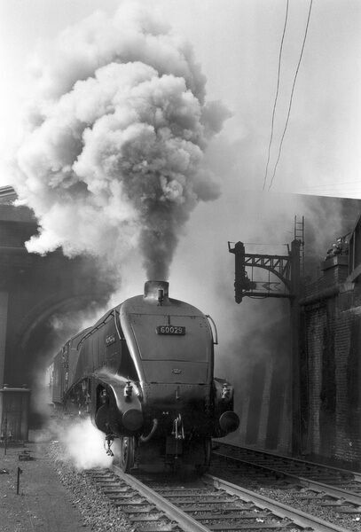 Woodcock', A4 Class steam locomotive No 60029, c 1954. Locomotive billowing smoke as it leaves Copenhagen Tunnel near London King's Cross station with a Newcastle-bound express passenger train. Photograph by Eric Treacy